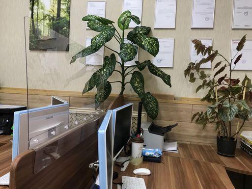 Экран противовирусный Барьер для фронталей и перегородок – фото в интерьере